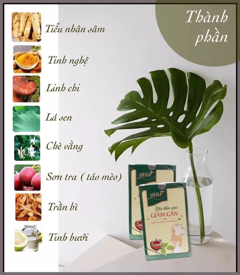Thành phần chính của trà giảm cân Hera Plus